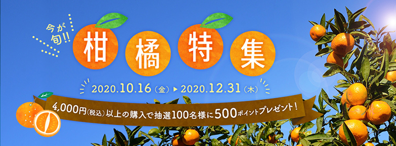 今が旬!柑橘特集 2020年10月16日(金) 2020年12月31日(木) 4,000円(税込)以上の購入で抽選100名様に500ポイントプレゼント!