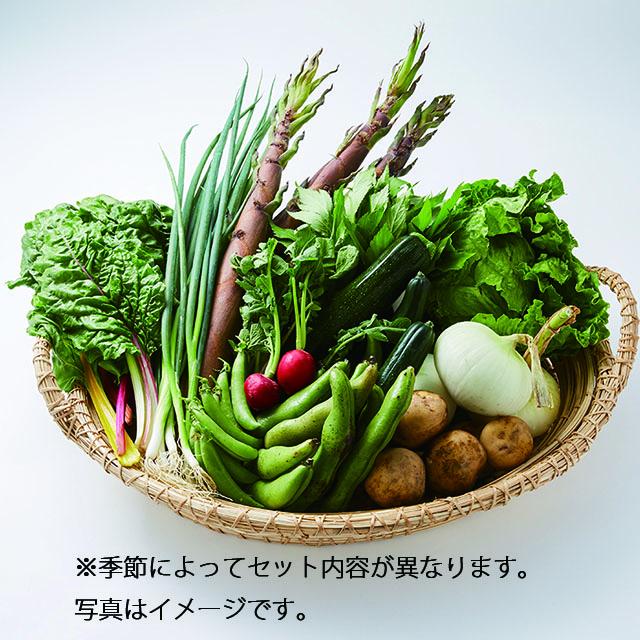 <静岡DC2020>【静岡DC】南伊豆湯の花直送 旬の野菜セット(大) 送料込
