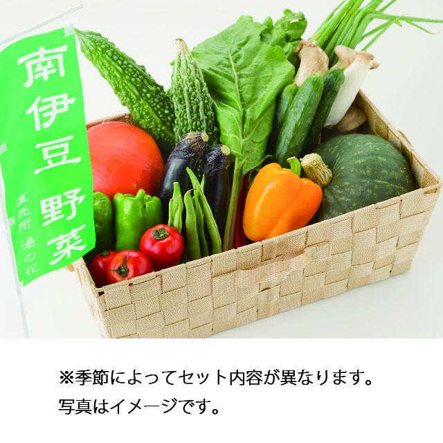 <お土産特集CP>南伊豆湯の花直送 旬の野菜セット(中) 送料無料