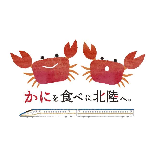 【販売終了】三国港産越前ずわいかに(オス)700g 送料込