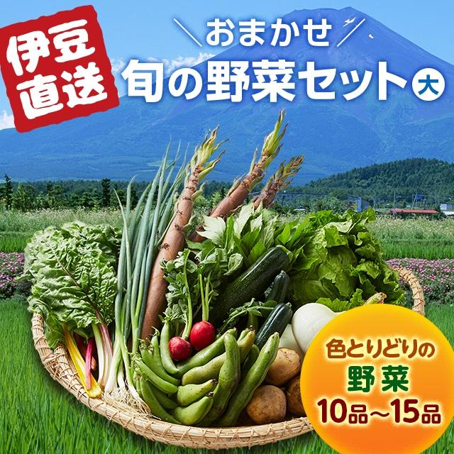 【静岡DC】南伊豆湯の花直送 旬の野菜セット(大) 送料込
