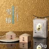 新潟県魚沼産コシヒカリ「雪椿」2kg 送料込