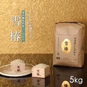 新潟県魚沼産コシヒカリ「雪椿」5kg 送料込