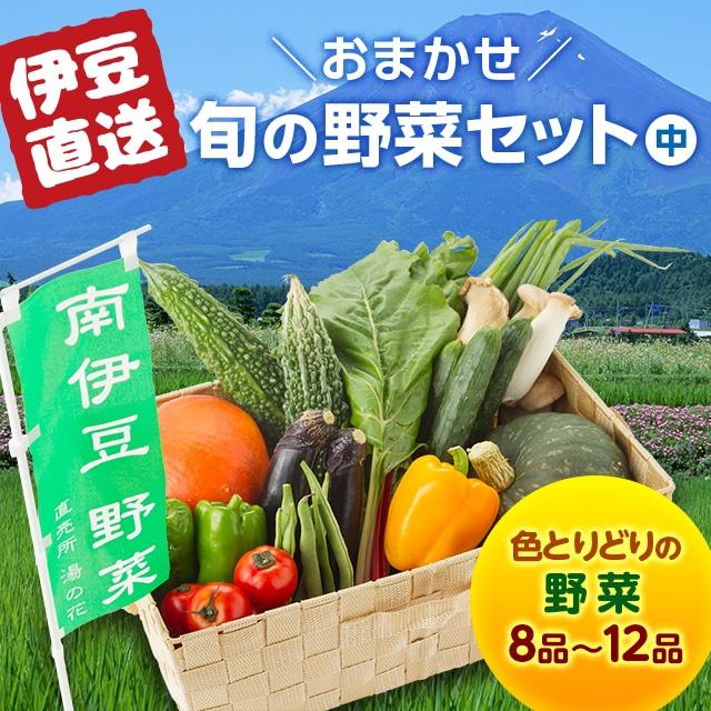 【静岡DC】南伊豆湯の花直送 旬の野菜セット(中) 送料込