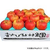 まさひろ林檎園 青森産 葉とらずサンふじ家庭用3kg 送料込