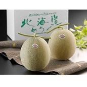 北海道 赤肉メロン 2玉 送料無料【2020SG】