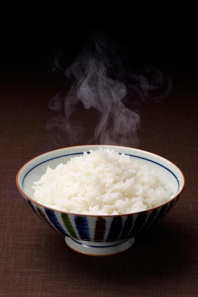 新潟県産 食べ比べセット 2合真空パック×10個セット 送料込