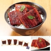 鰻楽 九州産うなぎ蒲焼(切身)5枚 送料込<ストック品>