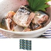 木の屋石巻水産 さんま水煮缶詰 12缶 送料無料