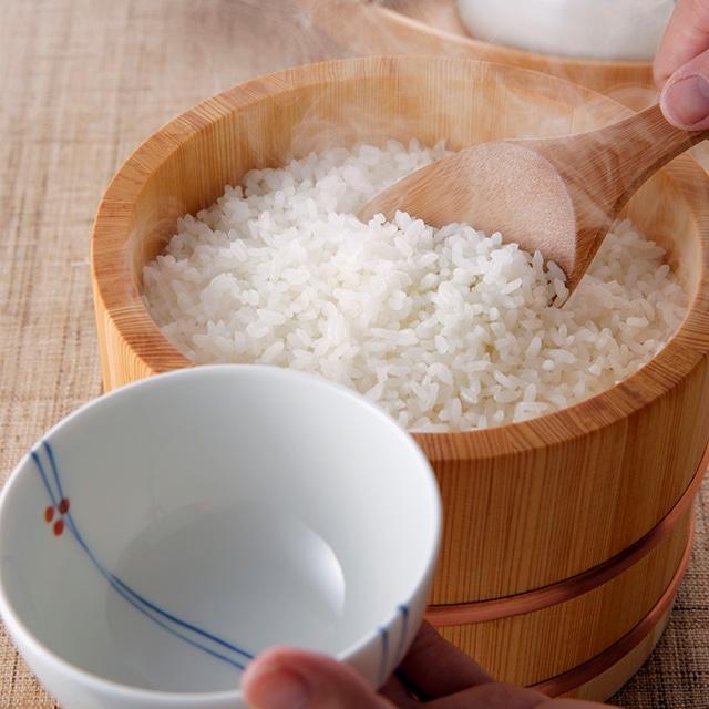石川県産ひゃくまん穀5kg 送料無料
