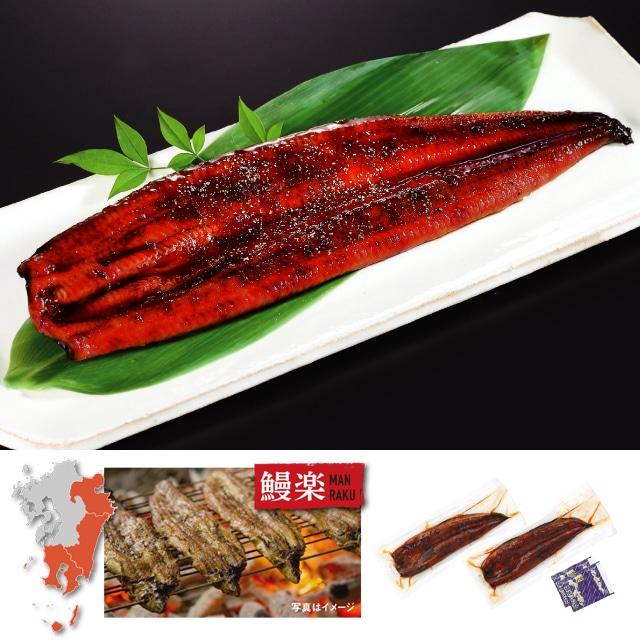 鰻楽 九州産うなぎ 蒲焼(長焼)2尾 送料込