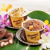ハワイアンホーストマカデミアナッツチョコアイスギフト送料込