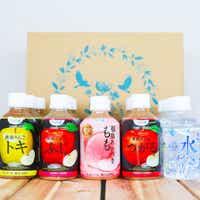 <2019冬ギフト> 【2019お歳暮】 青森りんご 飲み比べ 5種 20本ギフト