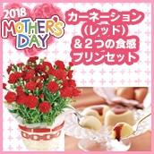 <2018母の日>カーネーション(レッド)&2つの食感プリンセット【送料込】