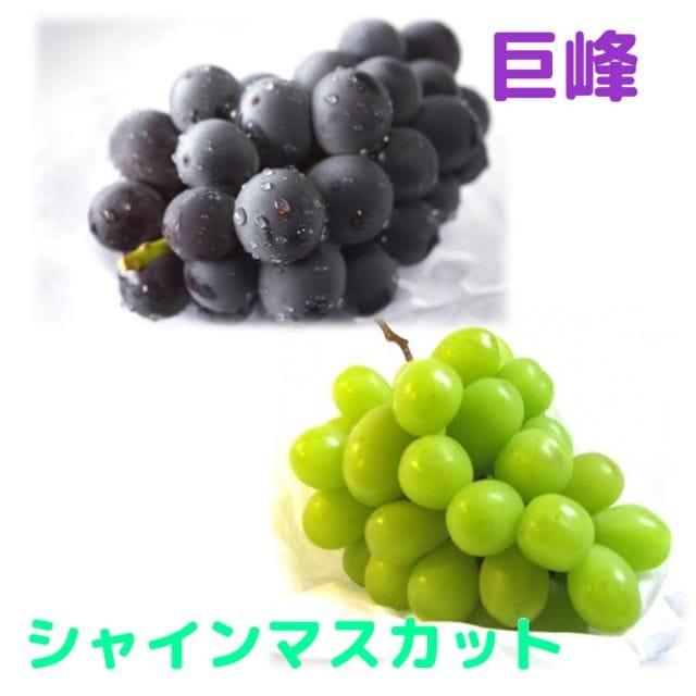 福島県産巨峰+シャインマスカット(種なし)2kg (9月末頃お届け)