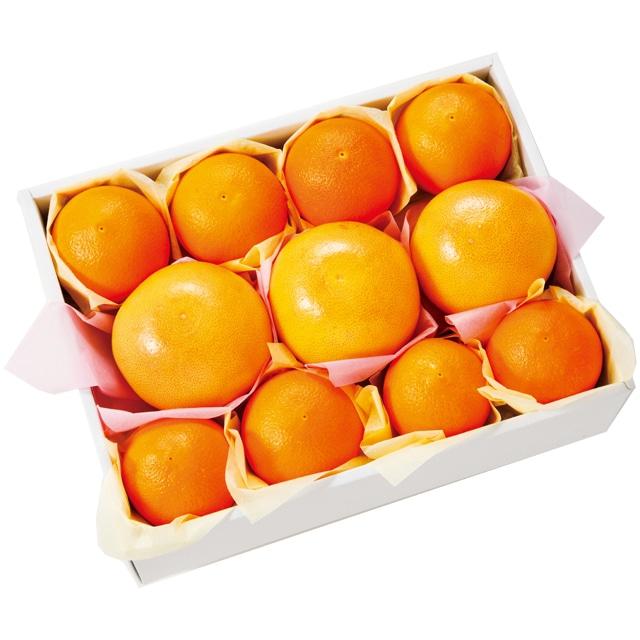 オレンジ・グレープフルーツ詰合せ