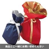 有料ラッピングオプション【ラッピングしてお届けします】プレゼント用 ギフト ラッピング包装【※単品購入不可】【のし不可】※USB、レインコート・ポンチョ、長靴、傘は対象外