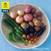 有機農業で有名な埼玉県小川町の「風の丘ファーム 季節のお野菜セット(9〜10種)」送料・税込