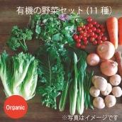 【特別価格】大田市場の目利きがセレクト 有機の野菜セット(11種)(送料・税込み)