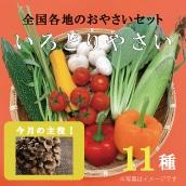 【特別価格】大田市場の目利きがセレクト こだわりの野菜セット(11種)(送料・税込み)