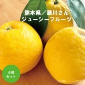 ★NEW★熊本県藤川さんのジューシーフルーツ(6個)(送料・税込み)