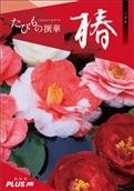 JTBえらべるギフトたびもの撰華 椿コース<2019冬ギフト>