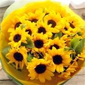 季節の花ギフト ひまわり30本の花束 生花 フラワーギフト 送料無料 誕生日 記念日 お祝い お花