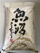幻の南魚沼しおざわ(従来品種)コシヒカリ10�s
